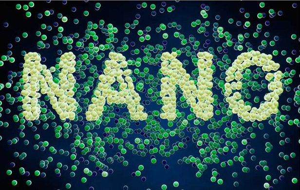 Scientists examine food at nano level