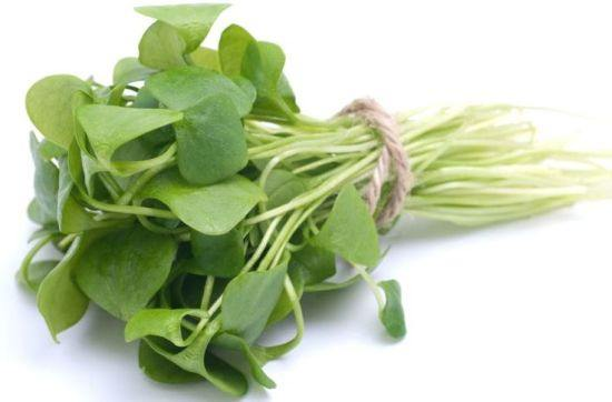 Purslane extract effective for T2 diabetes