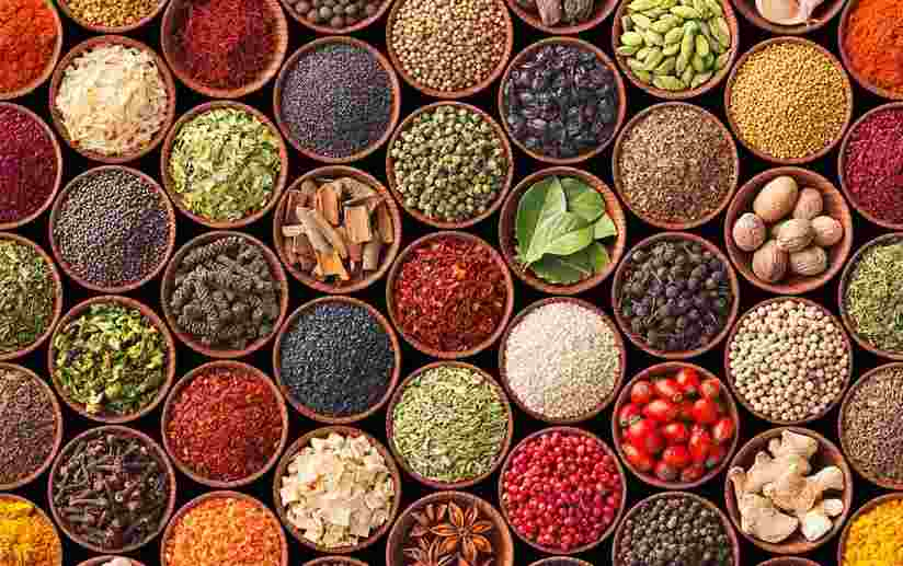 Herbs, spices guide launched