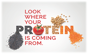 Are you looking to develop innovative products with veg protein?<br>Look no further…