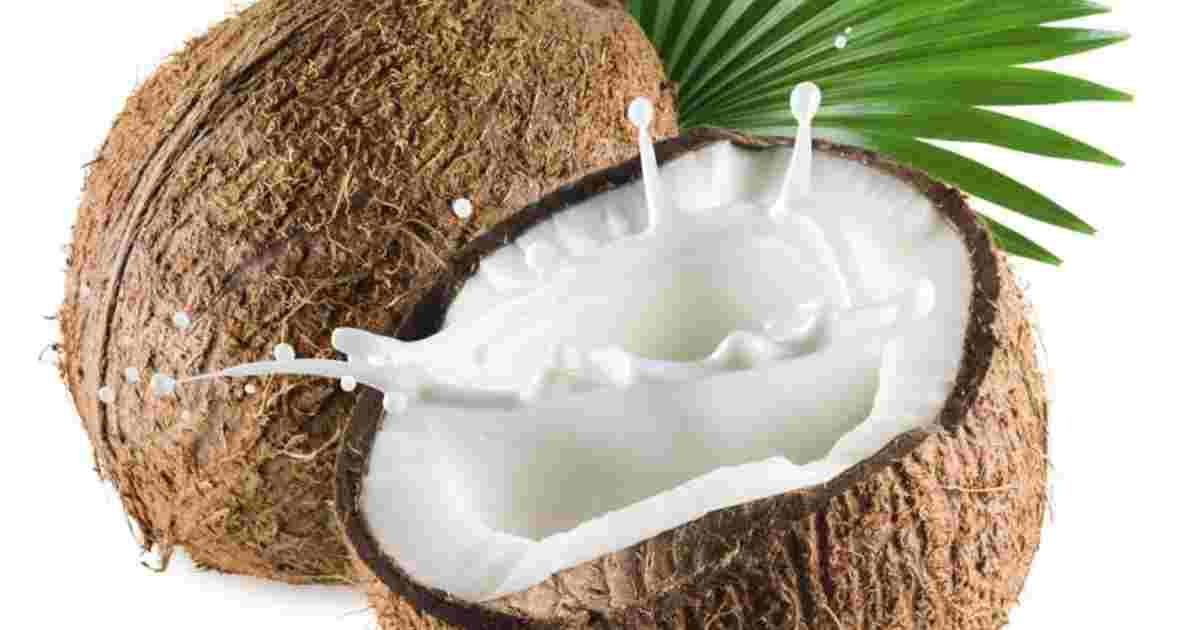 Hydrosol: coconut is the answer