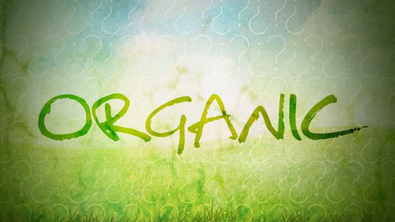 UK organic sales continue rise