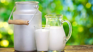 Arla extends Protein range with Protein Milk