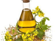 Cargill intros lowest saturated fat high oleic canola oil
