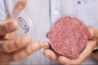 Survey: 30% of consumers would eat cultured meat