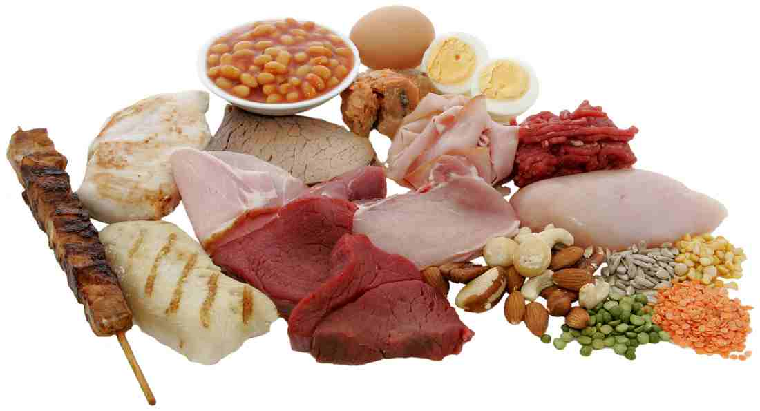 Study: meat protein, bad - nut protein, good
