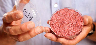 Aleph Farms announces 'significant' clean meat advances