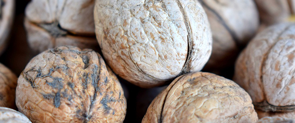 Plant-based eating boosts European walnut demand