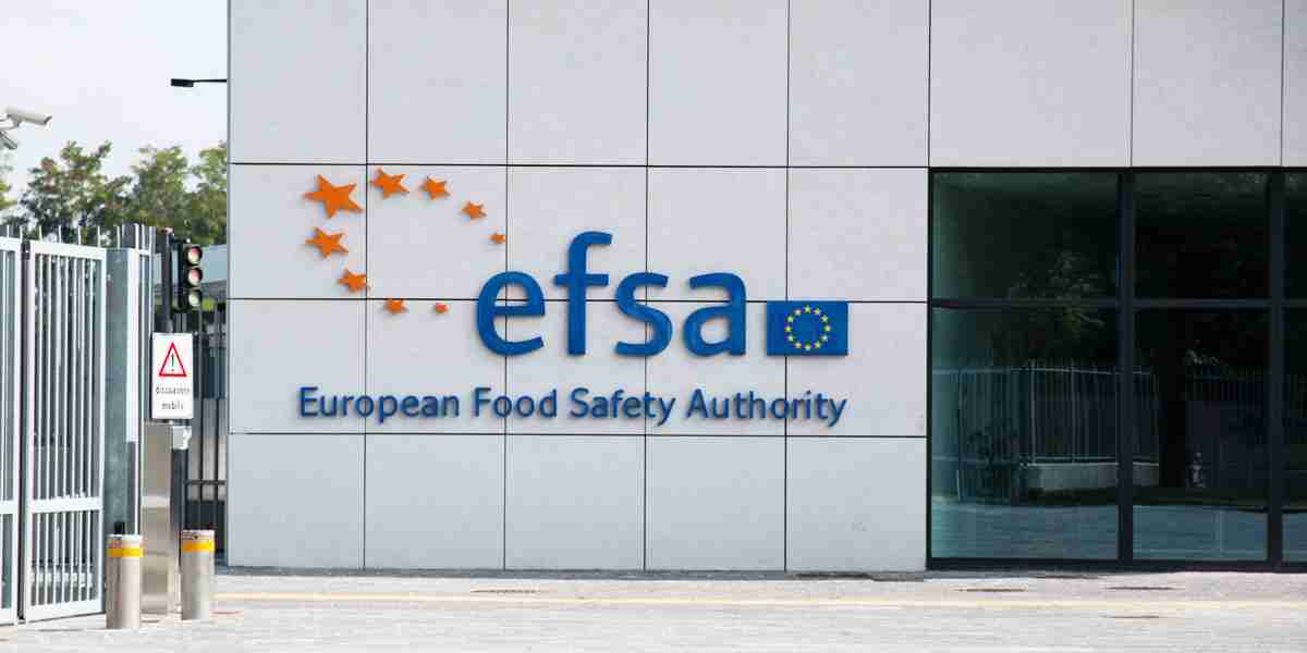 EFSA publishes Food Enzyme Intake Model