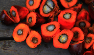 What does the future hold for sustainable palm oil?
