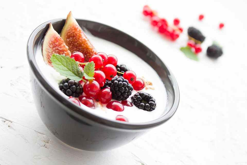 Yofix Probiotics launches dairy-free, soy-free yogurt alternative