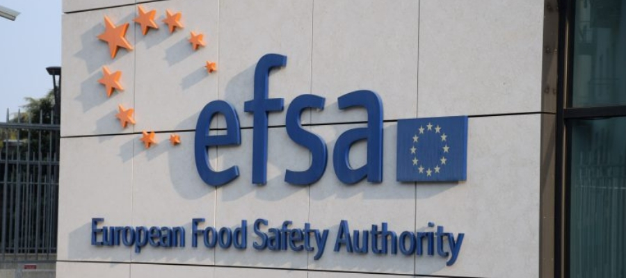 EFSA announces support for SMEs