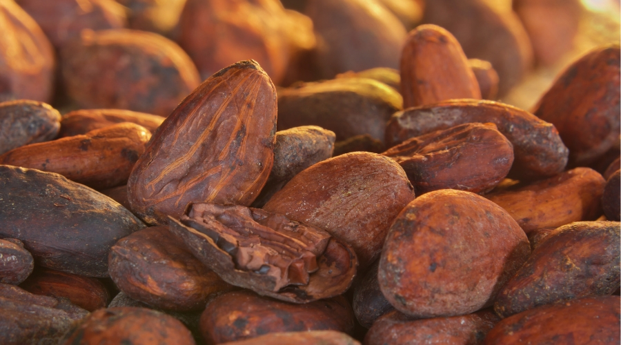 Callebaut reports further progress on traceability
