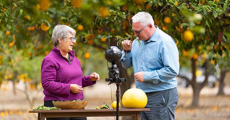 Givaudan launches citrus VR tool