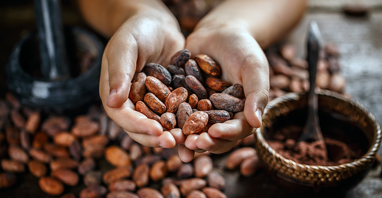 Cocoa and chocolate companies brace for Covid-19 impact