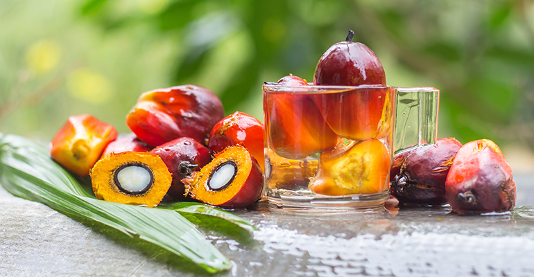 Sustainable palm oil: Tackling the consumer awareness challenge