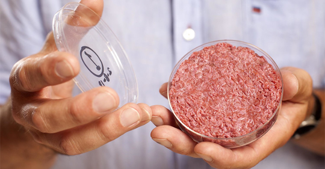 Cultured meat company Mosa Meat has closed a $55m Series B funding round