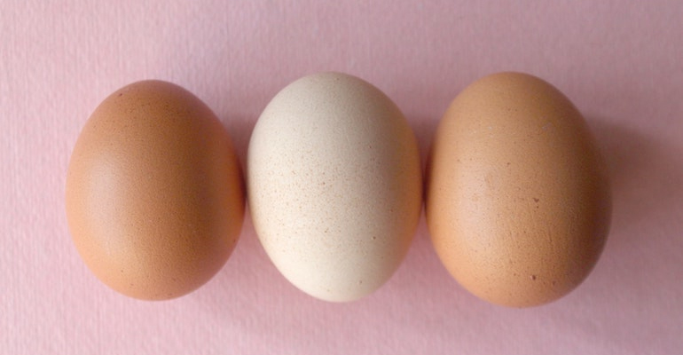 Higher egg intake linked to lower stroke risk in Asia, but not North America and Europe
