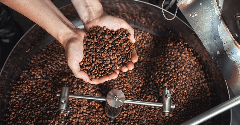 Coffee start-up to scale up 'digitization' of coffee aroma with $3m funding