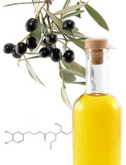 Oleacein (olive polyphenols)