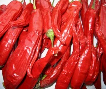 American Red Chili pods