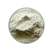 Propylene Glycol Alginate(PGA)