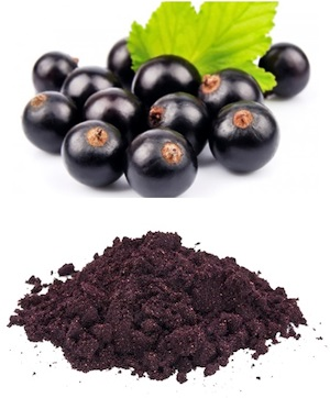 Organic Maqui Berry Powder Andean Grain Products Ingredients