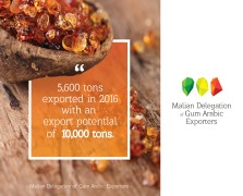 Malian Delegation of Gum Arabic Exporters