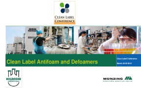 Clean Label Antifoam and Defoamers