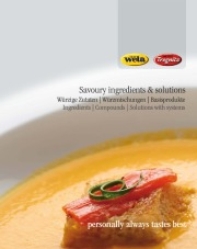 Savoury ingredients & solutions