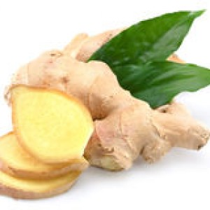 http://www.dreamstime.com/royalty-free-stock-photo-ginger-image25237835