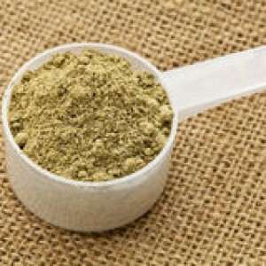 http://www.dreamstime.com/stock-photography-scoop-hemp-protein-powder-image24295742
