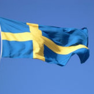 http://www.dreamstime.com/stock-photo-swedish-flag-image304560