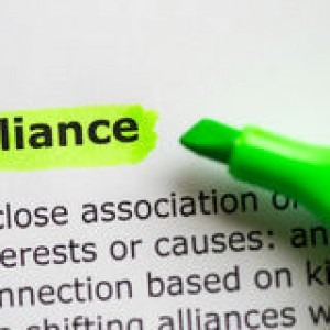 alliance-word-highlighted-white-background-50516899