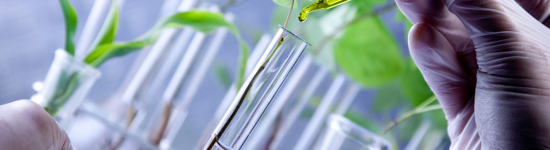 Report: F&F tapping biotechnology, synthetics