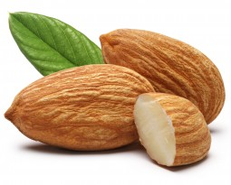 Almond Board commits $2.5m to saving water, bees