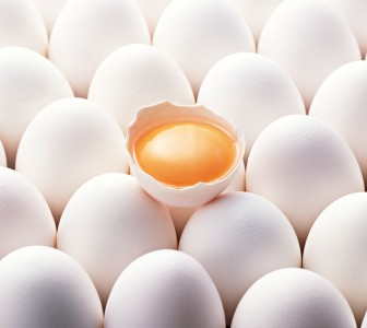 Penford expands egg replacement portfolio