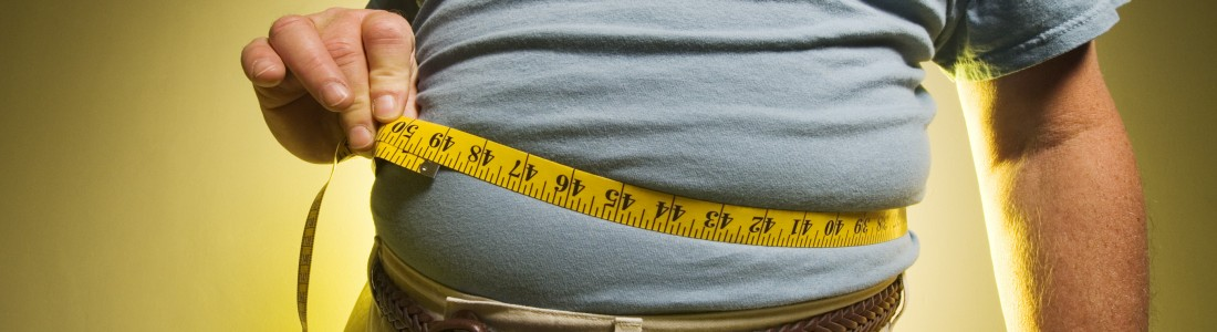 Scientists: study of yeast can help understand obesity