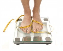 KitoZyme announces weight management ingredient